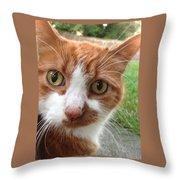 Peek A Boo -  I See You Throw Pillow