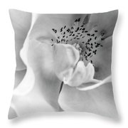 Peek-a-boo In Black And White Throw Pillow