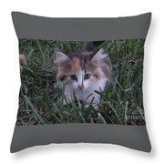 Peek A Boo Kitty Throw Pillow
