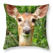Peek A Boo  Throw Pillow by Lori Frisch