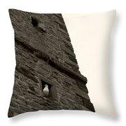 Peek-a-boo Pigeon Throw Pillow
