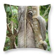 Peek-a-boo Sloth Throw Pillow