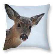 Peek A Doe Throw Pillow