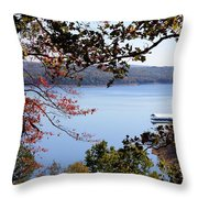 Peek-a-view Throw Pillow