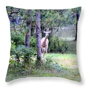 Peekaboo Deer Throw Pillow