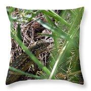 Peekaboo Lizard Throw Pillow