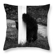 Peeking Kitty Black And White Throw Pillow
