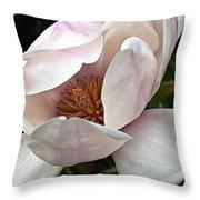 Peeking Magnolia Throw Pillow