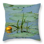 Peeking Up Throw Pillow