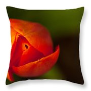 Peeling Away The Petals Throw Pillow