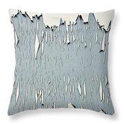 Peeling Paint 2 Throw Pillow