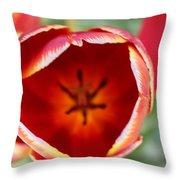 Peeling Tulip  Throw Pillow