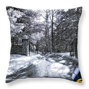 Peeling Winter Away Throw Pillow