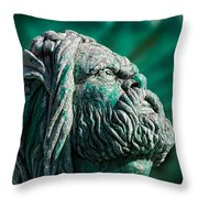 Peering Beyond The Waves Throw Pillow