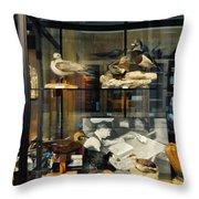 Peggy Notebaert Nature Museum Throw Pillow