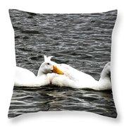 Pekin Ducks Throw Pillow
