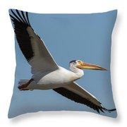 Pelican 2017-1 Throw Pillow