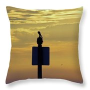 Pelican At Sunset Throw Pillow