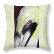 Pelican Closeup 1 Throw Pillow