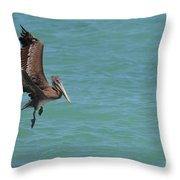 Pelican Contemplating A Water Landing In Aruba Throw Pillow