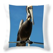 Pelican Dreams Throw Pillow