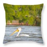 Pelican Drifting Along Throw Pillow