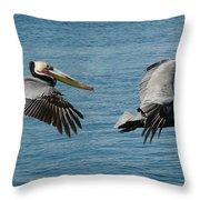 Pelican Duo Throw Pillow