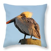 Pelican Feathers Throw Pillow