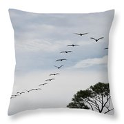 Pelican Formation Throw Pillow