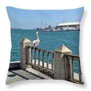 Pelican Gazing At Port Canaveral In Florida Throw Pillow