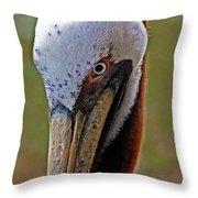 Pelican Head Throw Pillow