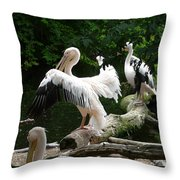 Pelican Hideaway Throw Pillow