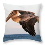 Pelican In Flight At Sunset Throw Pillow