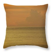 Pelican In The Sea Throw Pillow