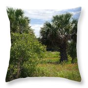 Pelican Island Nwr In Florida Throw Pillow