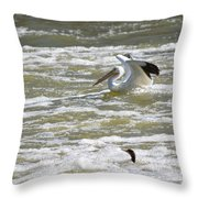 Pelican Landing And Cormorants Throw Pillow