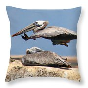 Pelican Leap Frog Throw Pillow