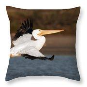Pelican Lift Off Throw Pillow
