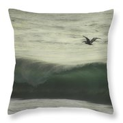 Pelican Odyssey Throw Pillow