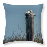 Pelican On A Piling Throw Pillow