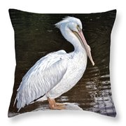 Pelican On Black Throw Pillow