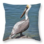 Pelican On Rock Throw Pillow