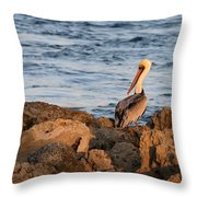 Pelican On The Rocks Throw Pillow