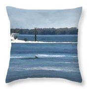 Pelican Porpoise And Fishermen Throw Pillow