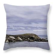 Pelican Race Throw Pillow