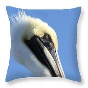 Pelican Soft Throw Pillow