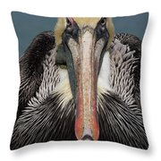 Pelican Stare Throw Pillow