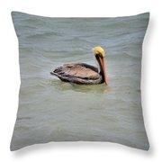 Pelican Swimming  Throw Pillow