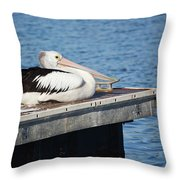 Pelican Taking Time Out 691 Throw Pillow