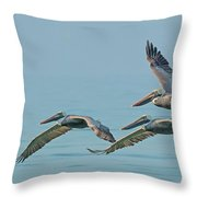 Pelican Trio Throw Pillow